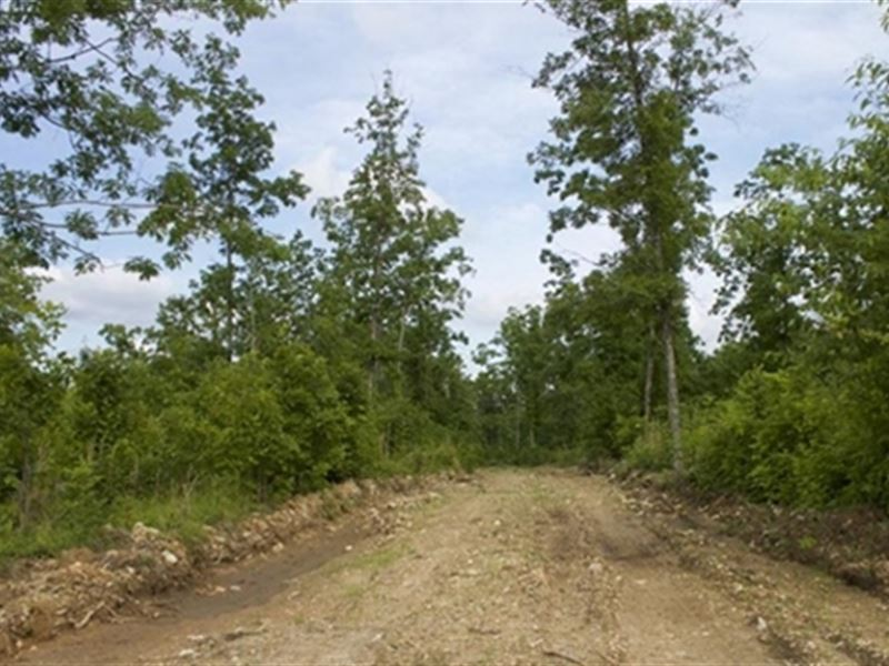 Missouri, Shannon County : Birch Tree : Chautauqua County : Kansas