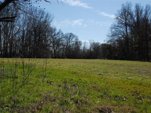 155 Acre Farm With Timberland : Marvell : Phillips County : Arkansas