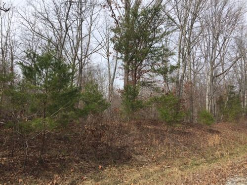 2.41+/- Acres Bank Owned Nice Woods : South Pittsburg : Marion County : Tennessee