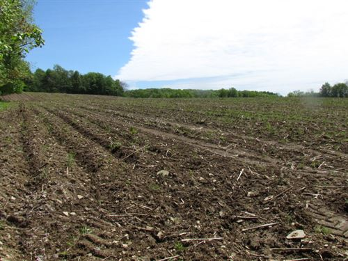 103 Acres Farmland Central New York : Cortlandville : Cortland County : New York