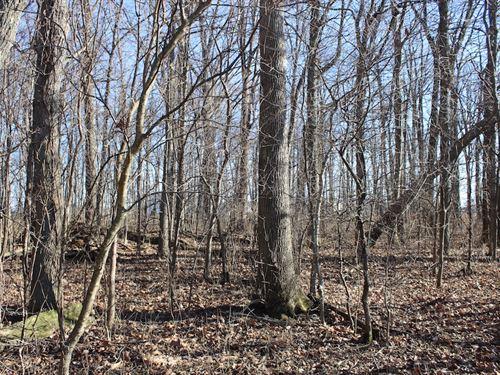 Ridpath Rd - 5 Acres : Grove City : Franklin County : Ohio