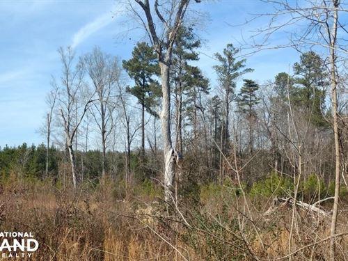 Siler City Snow Camp Road : Siler City : Chatham County : North Carolina