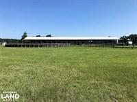 St, Matthews Horse Farm : Saint Matthews : Calhoun County : South Carolina