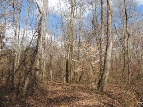 47.99 Ac On Piney Wood Drive : Newnan : Coweta County : Georgia