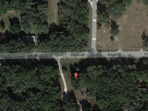 Vacant Acreage For Sale In Wildwood : Wildwood : Sumter County : Florida