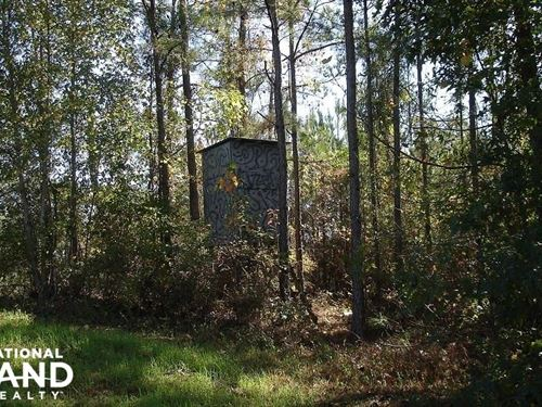 Ramey Road Hunting And Recreation : Moundville : Hale County : Alabama