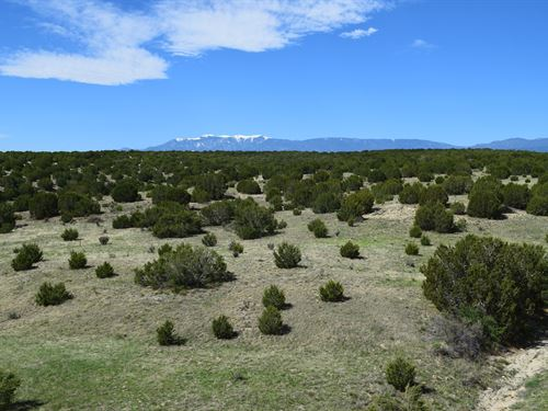 Affordable Big Acreage Ranch : Pueblo : Colorado