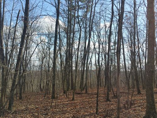 24.5+/- Acres With Hardwoods : Soddy Daisy : Hamilton County : Tennessee