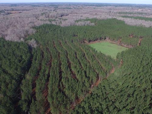 46-009 Persimmon Creek : Tuskegee : Macon County : Alabama