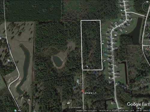 Tamara Ln- 11 Acres Barn Side : Callahan : Nassau County : Florida