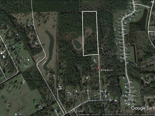 Tamara Ln- 11 Acres- Left Side : Callahan : Nassau County : Florida