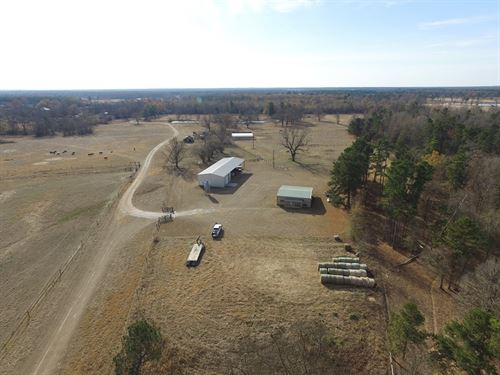 303 Acre Ranch / 30561 : Bagwell : Red River County : Texas