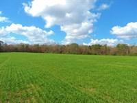 Pond, Fields And Big Timber : Madison : Morgan County : Georgia