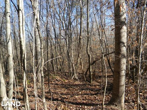 Fayette County Hunting & Recreation : Berry : Fayette County : Alabama