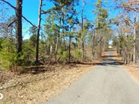 Wye Mountain 5 Acres Residential, : Bigelow : Pulaski County : Arkansas