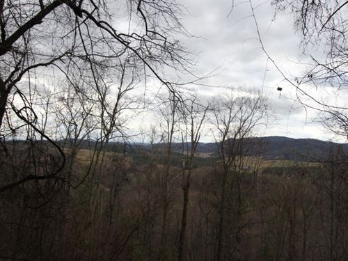 22.35 Acres Of Mature Timber : Elk Creek : Grayson County : Virginia