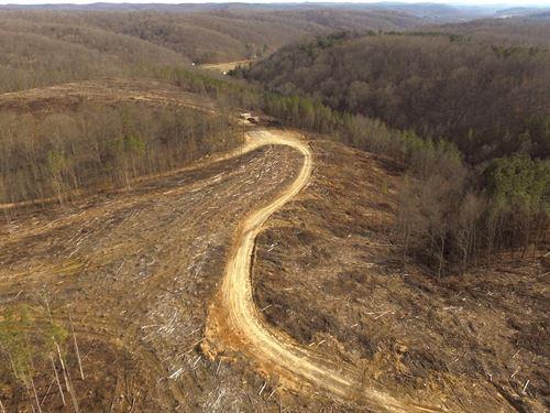 Doles Rd - 79 Acres : Ray : Vinton County : Ohio