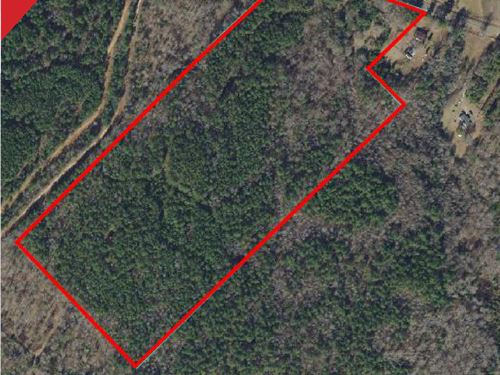 Estate Auction - 33+/- Acres : Haddock : Baldwin County : Georgia