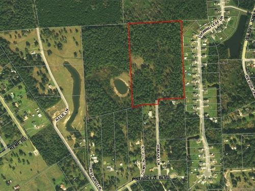 22 Acres- Tamara Lane : Callahan : Nassau County : Florida