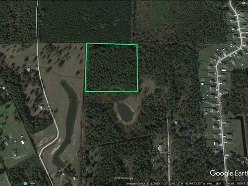 11 Acres - Red Bird Ln : Callahan : Nassau County : Florida