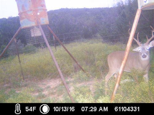 Mustang Creek 32 : Eden : Concho County : Texas