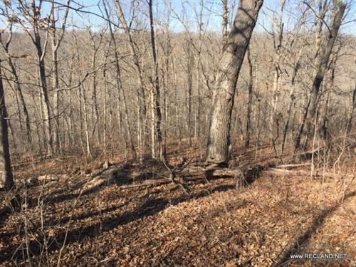 18 Ac - Wooded Recreational Tract : Camdenton : Camden County : Missouri