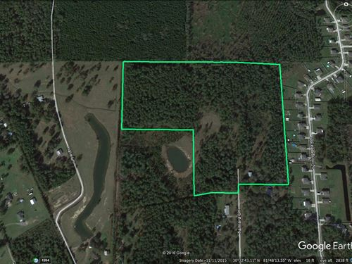 33 Acres - Red Bird Lane : Callahan : Nassau County : Florida