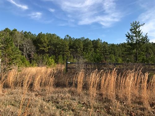 19.85 +/- Wooded Acres : Cartersville : Bartow County : Georgia