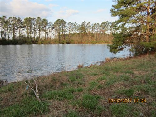 17 Acres & 3Ac Private Pond : Newton Grove : Sampson County : North Carolina