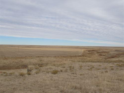 North Fork Smoky Hunting Property : Goodland : Sherman County : Kansas