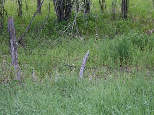 Little Cimmaron Ranch : Gunnison County : Colorado
