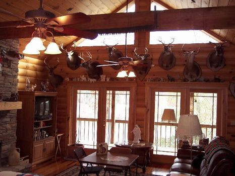 Retreat on 50 Acres with Lake : Newsite : Tallapoosa County : Alabama