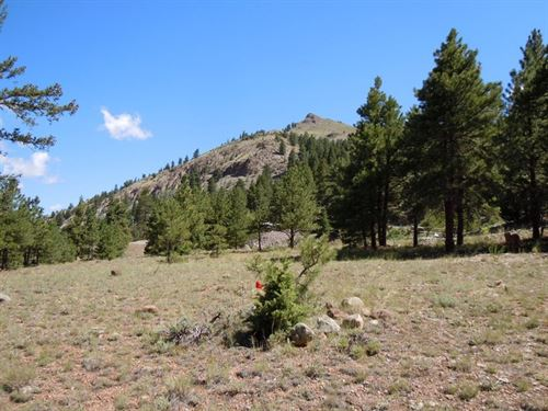 Park Creek Lot 9 : Lake City : Hinsdale County : Colorado
