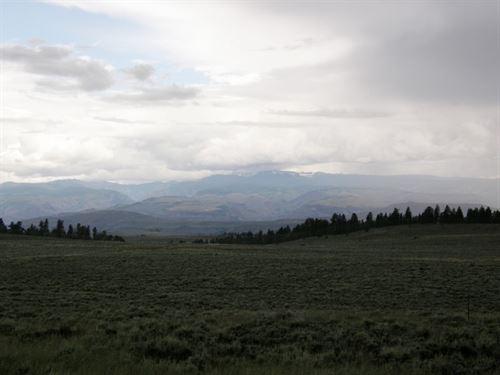 4 Acres In Blue Mesa Estates : Gunnison : Colorado