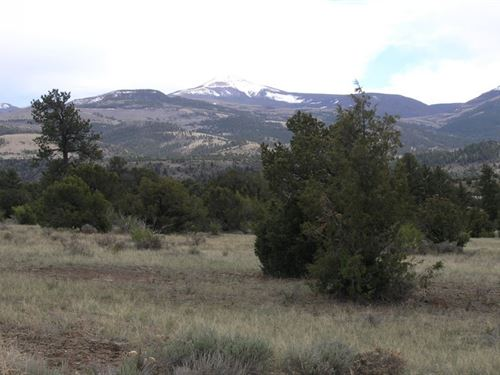 Bear Creek Lot 108 : South Fork : Rio Grande County : Colorado
