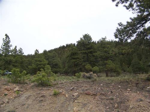 San Juan Ranch Estates Lot 25 : Lake City : Hinsdale County : Colorado