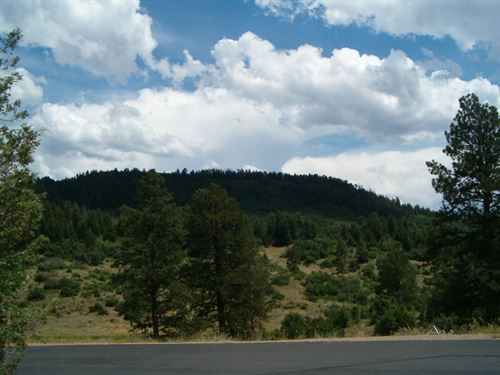Reserve At Pagosa Peak, Lot 123 : Pagosa Springs : Archuleta County : Colorado