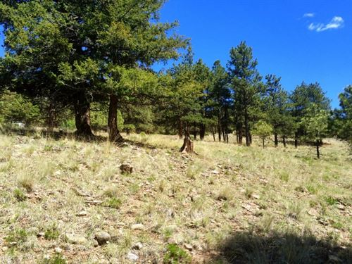 San Juan Ranch Estates, Lot 2 : Lake City : Hinsdale County : Colorado