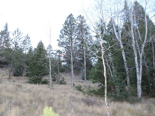 San Juan Ranch Estates, Lots 53 &Am : Lake City : Hinsdale County : Colorado