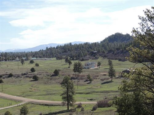 Pagosa Meadows Lot : Pagosa Springs : Archuleta County : Colorado