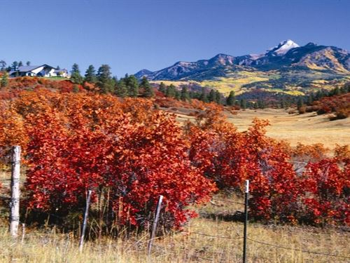 Reserve At Pagosa Peak Lot 89 : Pagosa Springs : Archuleta County : Colorado