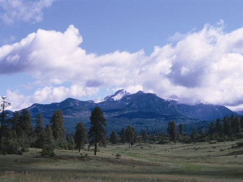 Reserve At Pagosa Peak, Lot 92 : Pagosa Springs : Archuleta County : Colorado