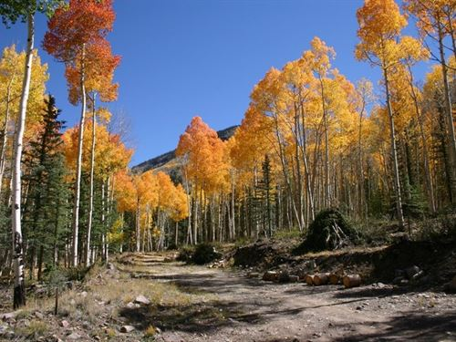 Lot 6 Alpine Vista : Lake City : Hinsdale County : Colorado