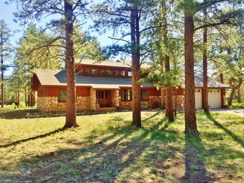 Ponderosa Beauty : South Fork : Rio Grande County : Colorado