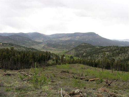 Willow Park Lot 103 : South Fork : Rio Grande County : Colorado