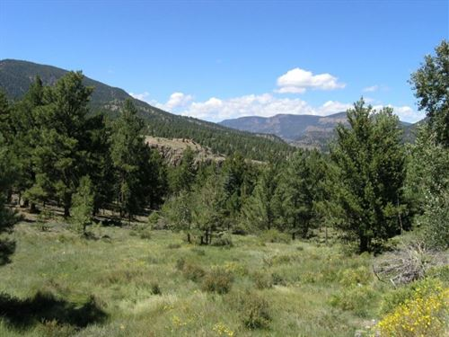 Gorgeous Mountain Lot : South Fork : Rio Grande County : Colorado