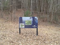Lot 12 Timber Ridge Subdivision : Ferguson : Wilkes County : North Carolina