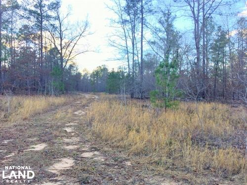 Elgin Development Acreage : Elgin : Kershaw County : South Carolina