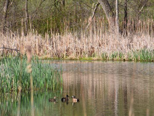 Leavenworth West 45 : Tonganoxie : Leavenworth County : Kansas