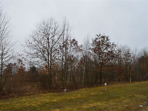Lot 3 Buildable Rural Country Lot : Oxford : Marquette County : Wisconsin